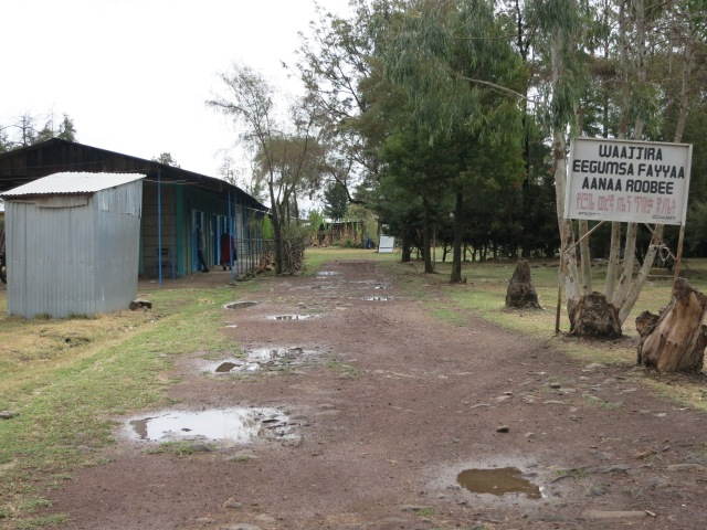 "The compound of my office - which is shared with a finance building and Ethiopian ""Red Cross"""